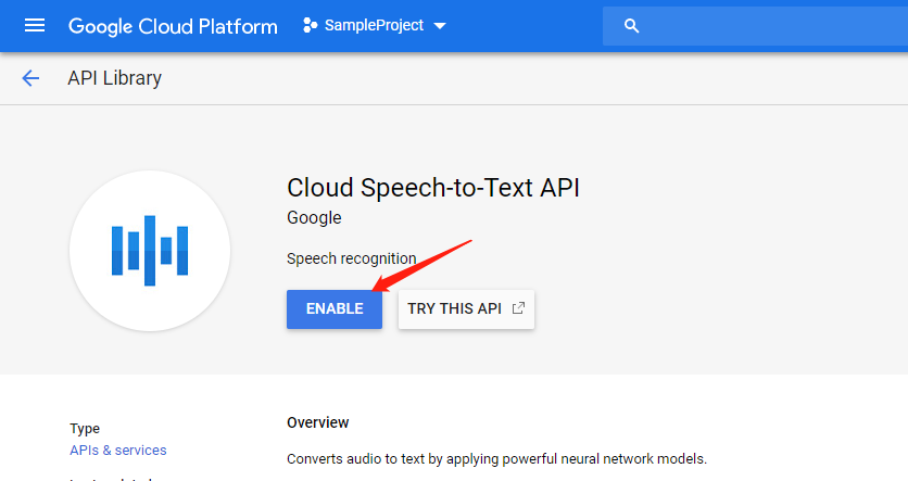 enable google cloud api